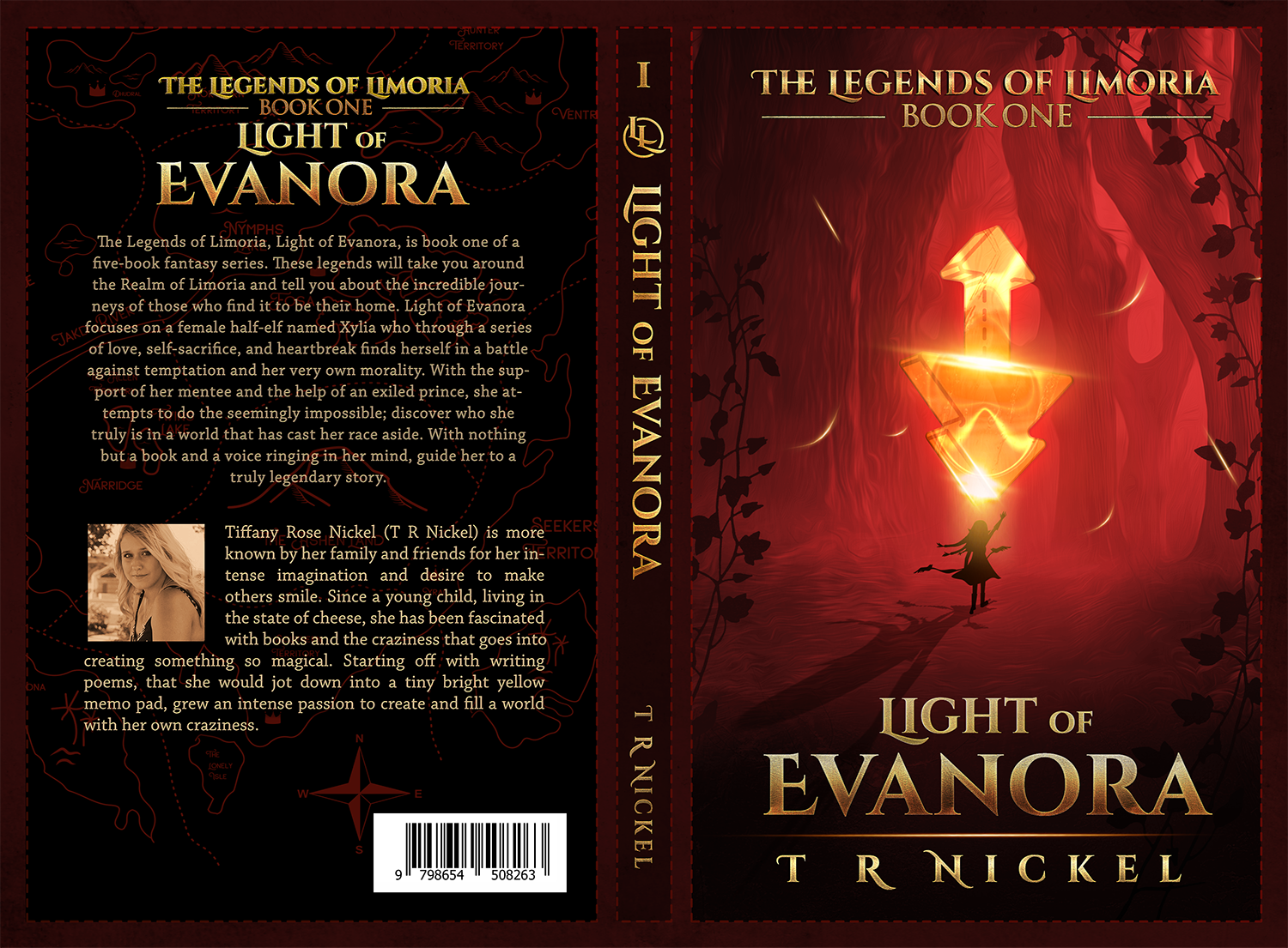 High Fantasy Novel Cover Illustration to Appeal to Young Adults+