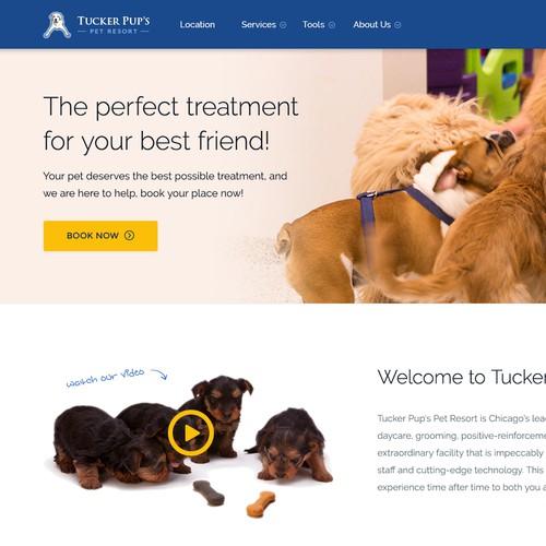 Pet Resort Website Redesign