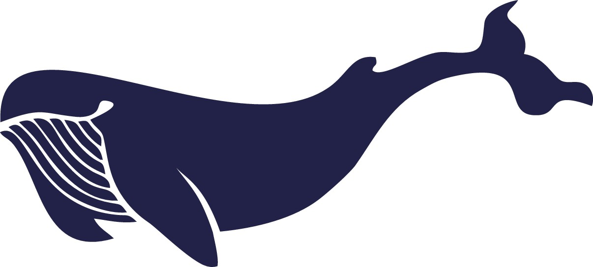 Sealevel Design