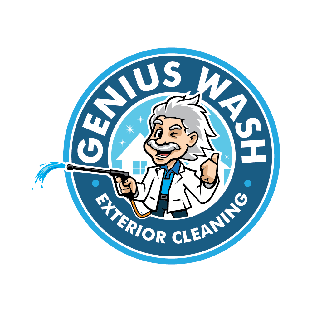 """A slick & animated Einstein lookalike spraying water out of a hose for my business """"Genius Wash"""""""