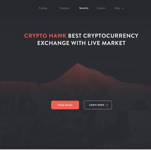 Crypto Hawk design concept