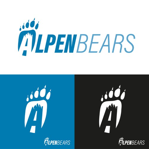 Logo Concept for a Winter-Sportsbrand