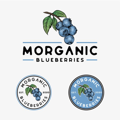 vintage logo blueberry emblem with engraved style