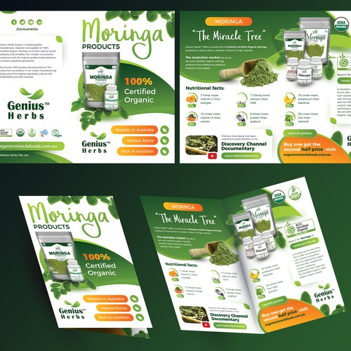 Organic Moringa Products - Brochure / Leaflet