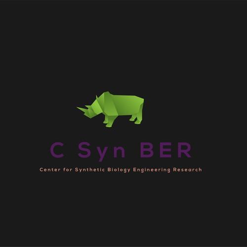 Logo for C SYN BER