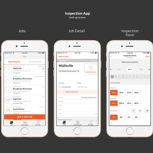 Inspection App design entry