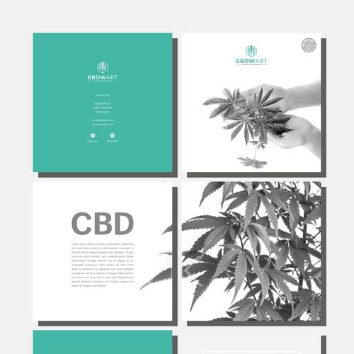 Modern and clean Brochure for hemp/CBD Company