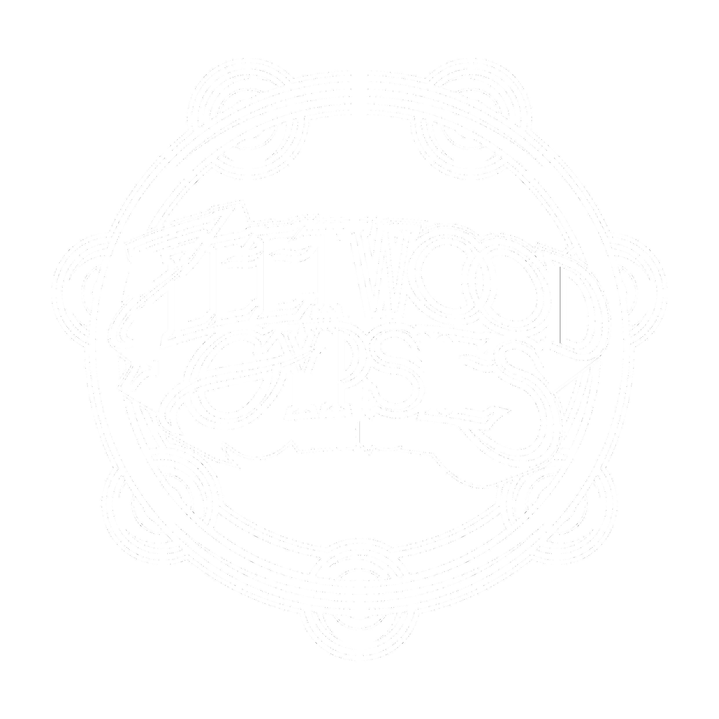 Fleetwood Mac Tribute Band Logo