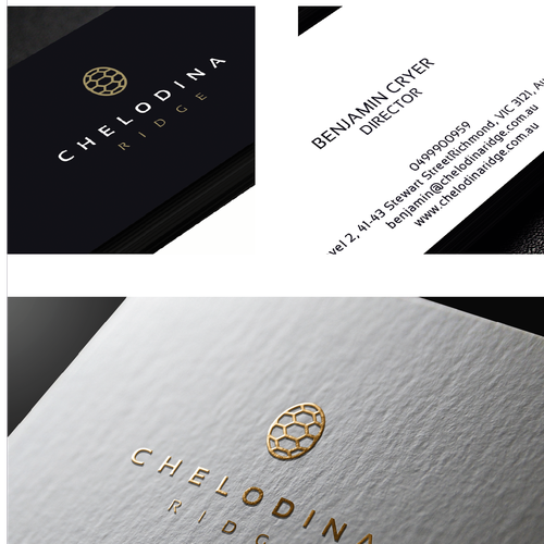 Chelodina Ridge's Logo and Brand identity