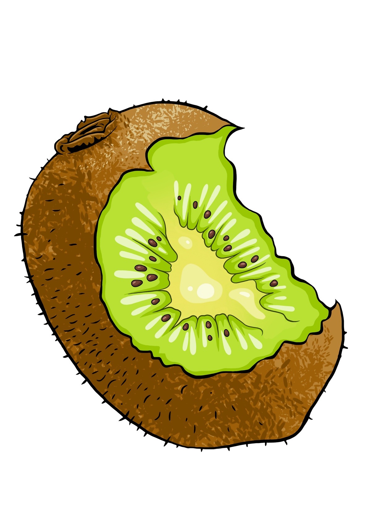 Kiwifruit graphic with bite taken out