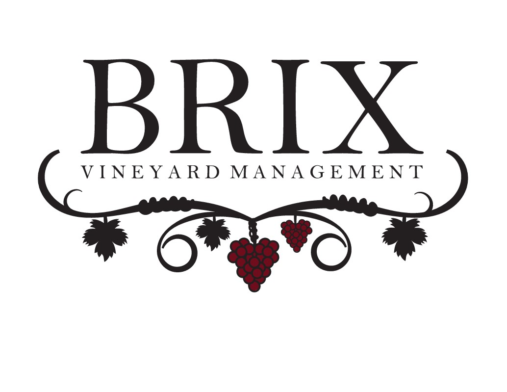 Design a world class logo for the grape vineyard to wine industry.