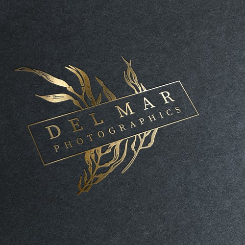 Del Mar Photographics Logo Sketch