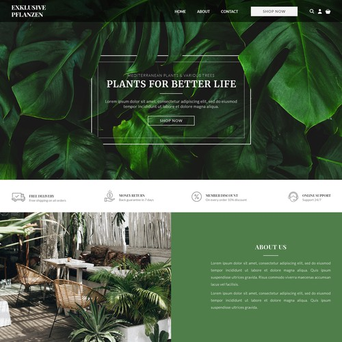 Web Design for Plants Shop
