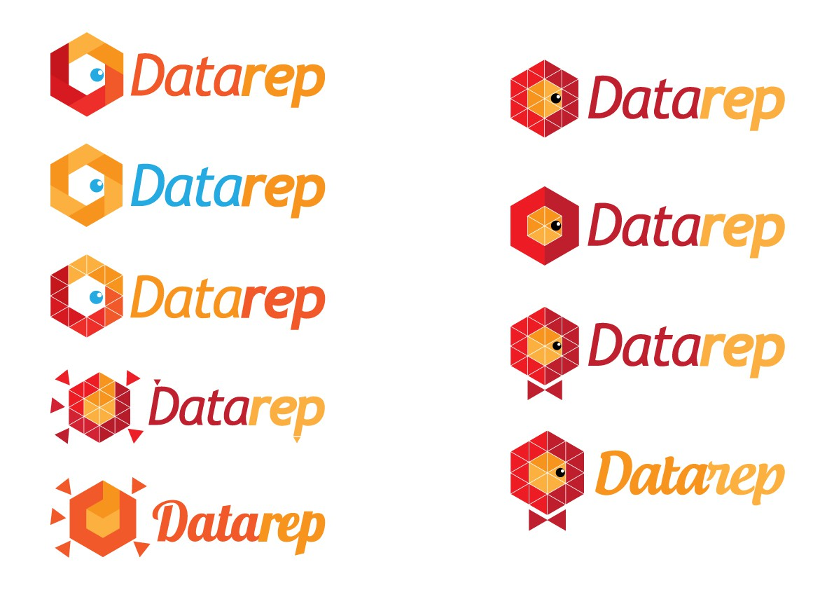 Help Data Rep with an awesome new logo