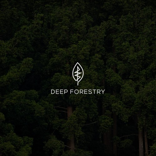 logo design for Deep Forestry