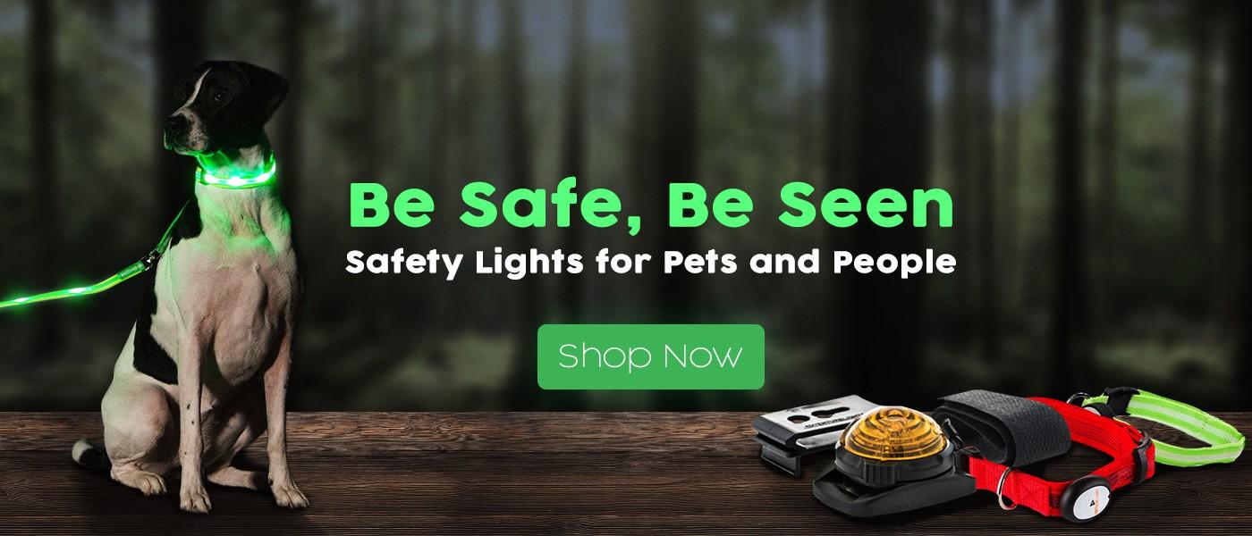 Dog Safety Website Needs Slider Upgrade