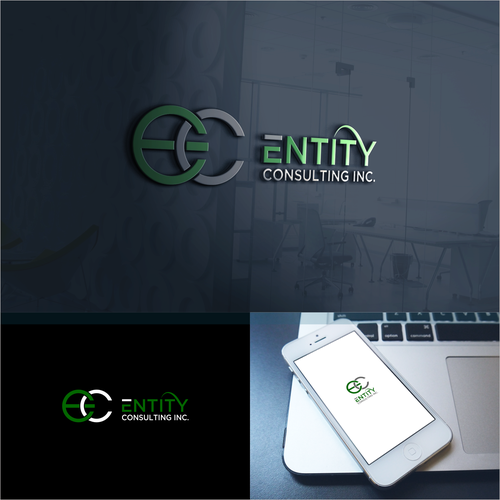 ENTITY CONSULTING INC