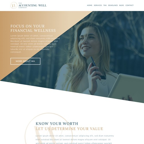 The Accounting Well Company Website