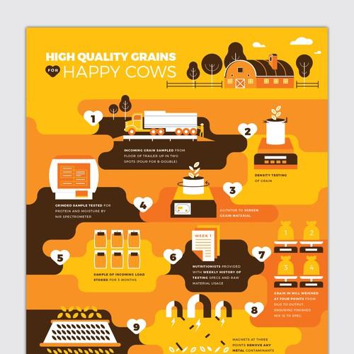 Grain Flow Infographic
