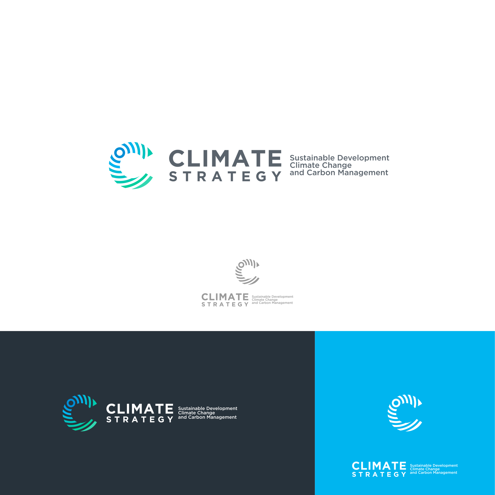 Climate strategy