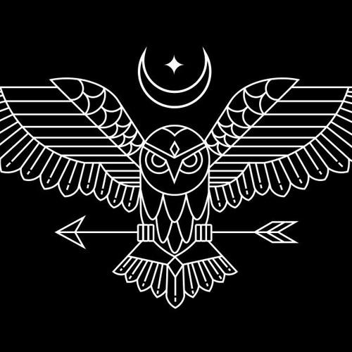 Owl line art illustration