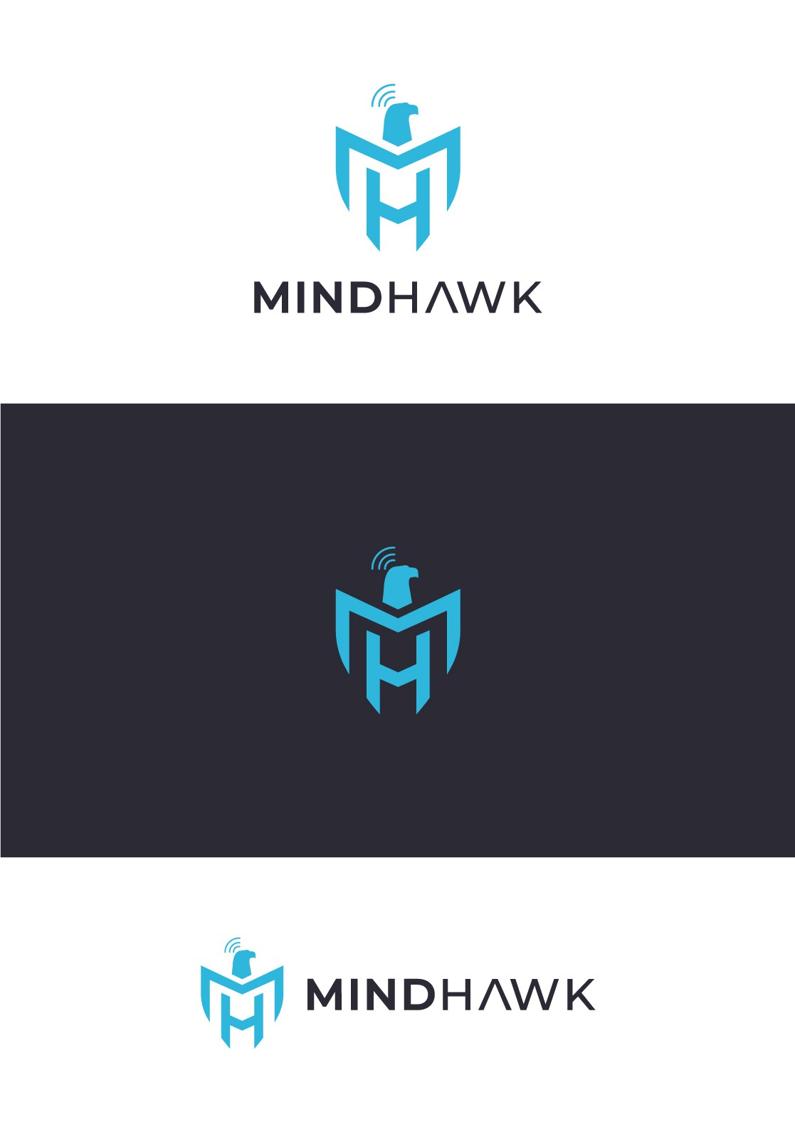 Looking for Balance: Create a strong yet mindful logo for MindHawk training