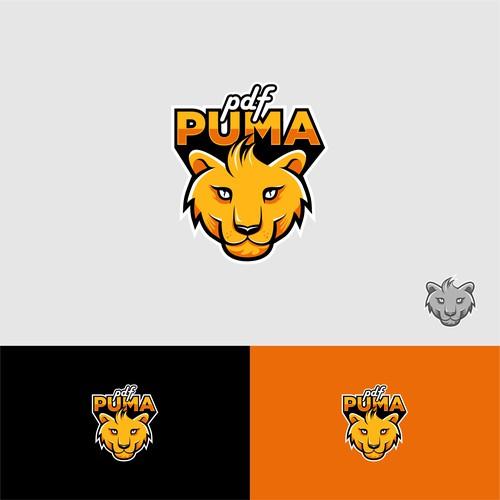 concept for pdf puma