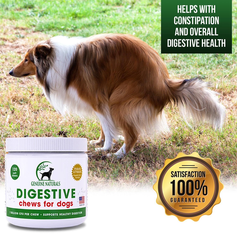 genuine naturals digestive banner ads