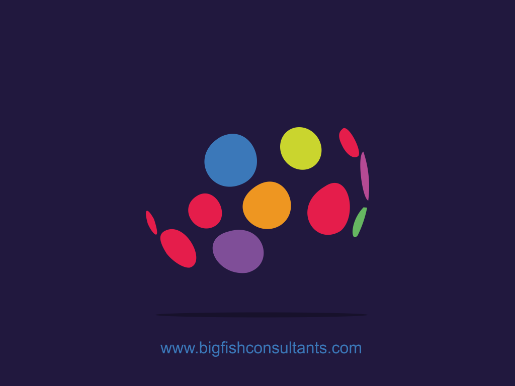 BigFish Consultants needs a fresh and exciting new logo and business card