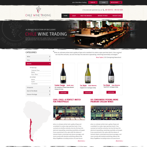 Cooles Website design für ChileWineTrading