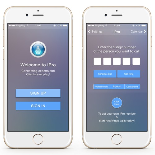 iOS Application UI for Consulting Company