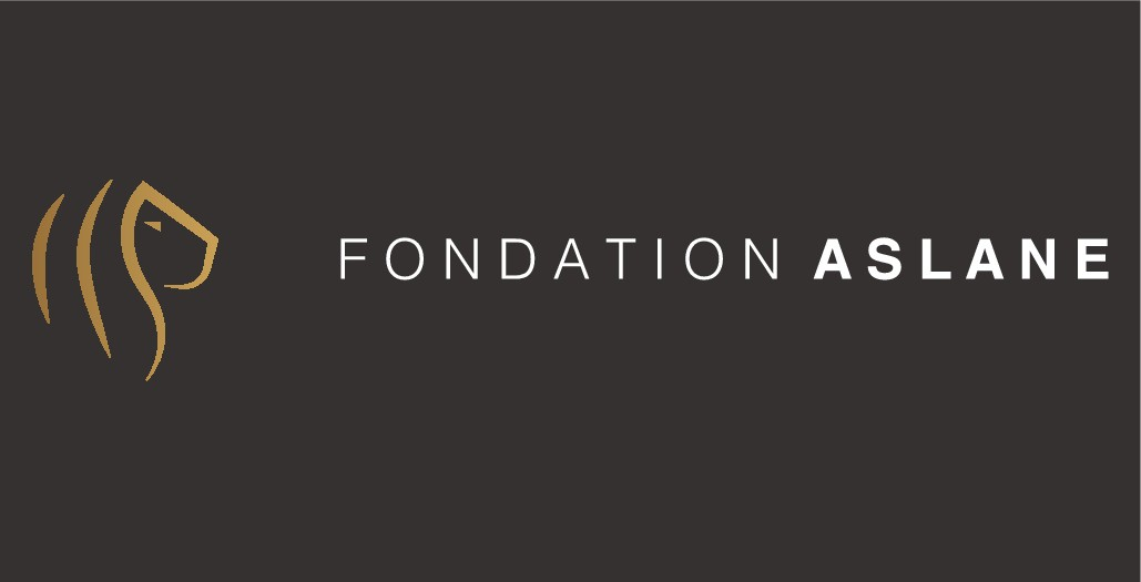 Help us so we can help others! Design a modern and refined logo for the Aslane Foundation