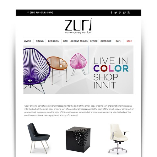 Email template for mid-high end modern furniture company