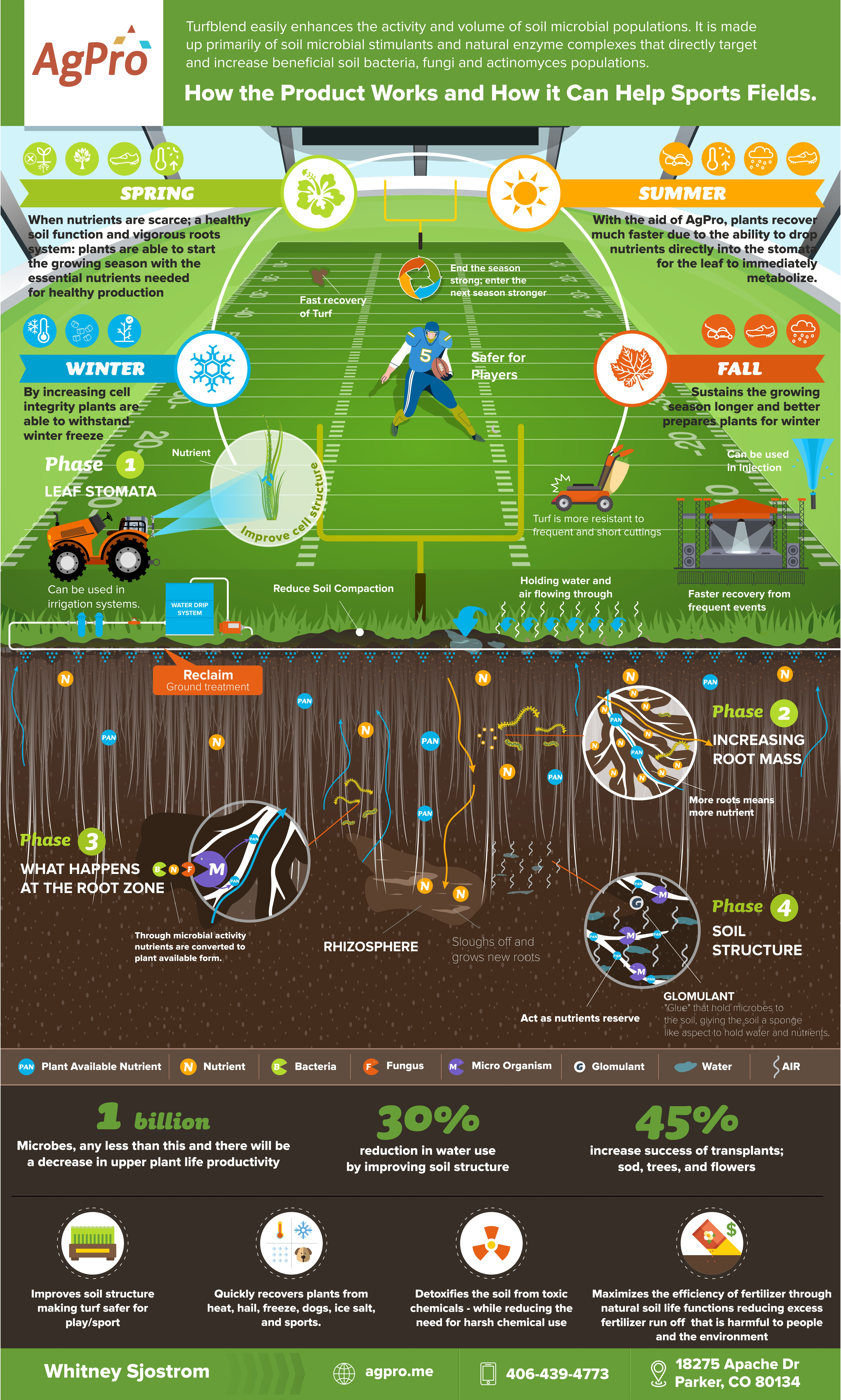 Sports Field Infographic