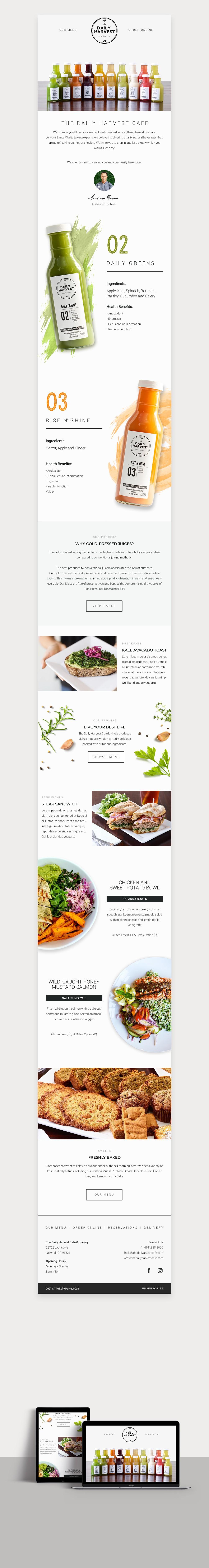 Daily Harvest Cafe HTML Newsletter - Mailchimp