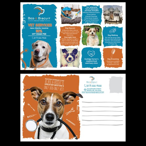 Postcard for pet clinic