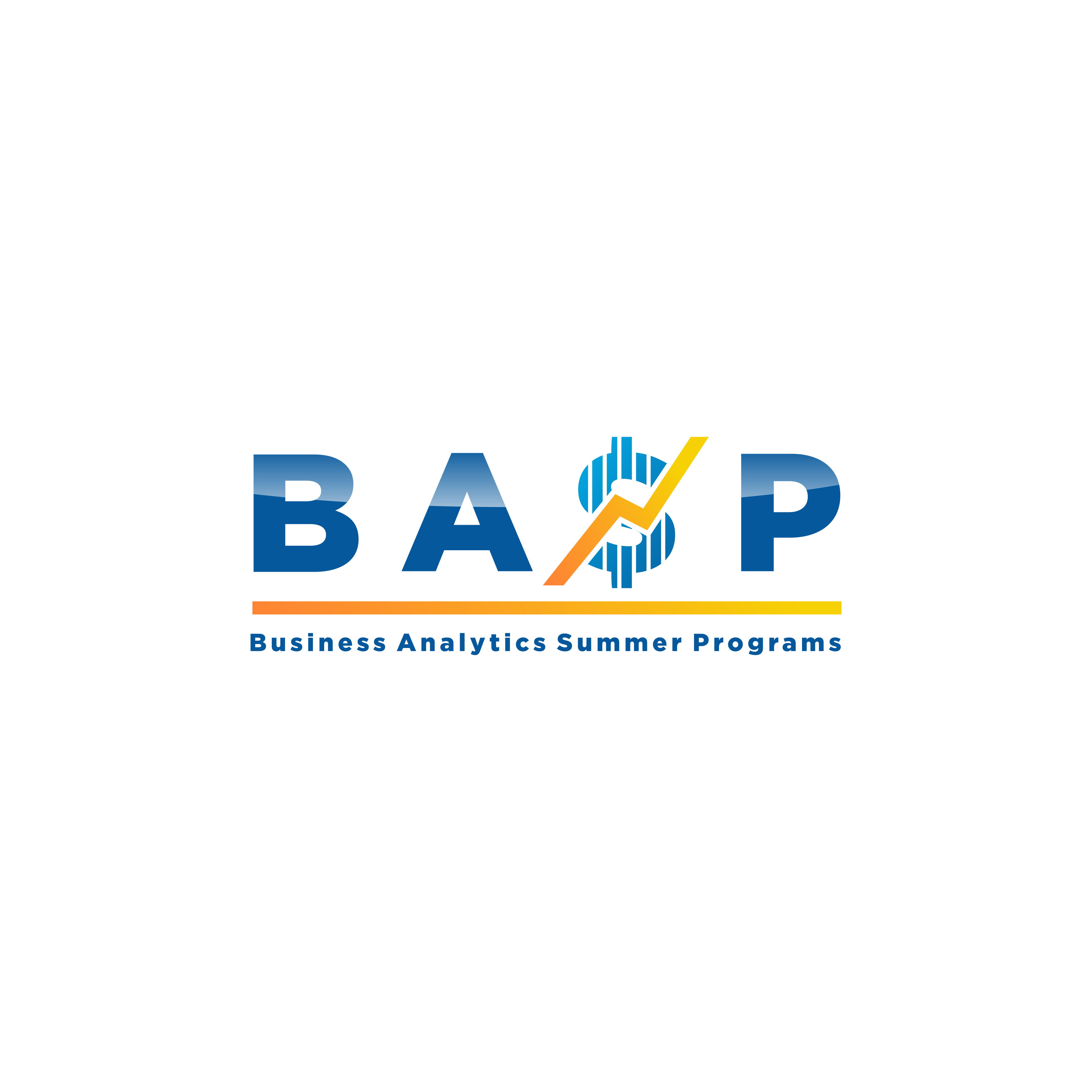 A logo to attract High School Students interested in a summer program for Business Analytics