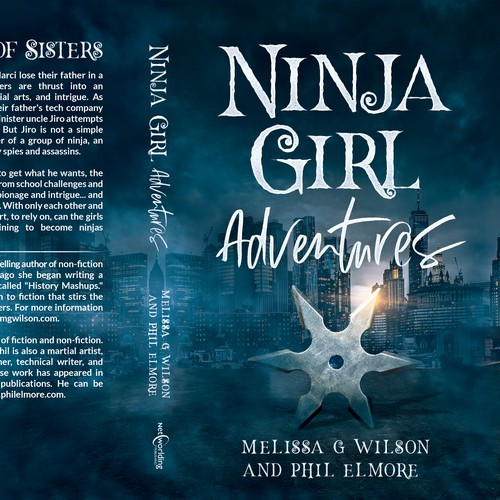 "YA Novel ""Ninja Girl Adventures"""