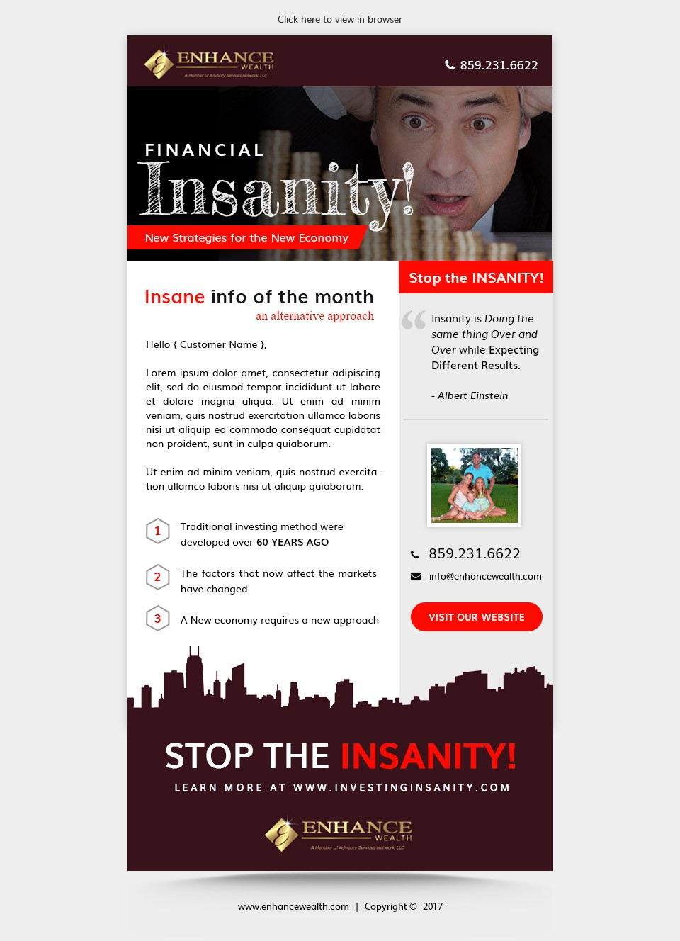 Financial Insanity Newsletter Template