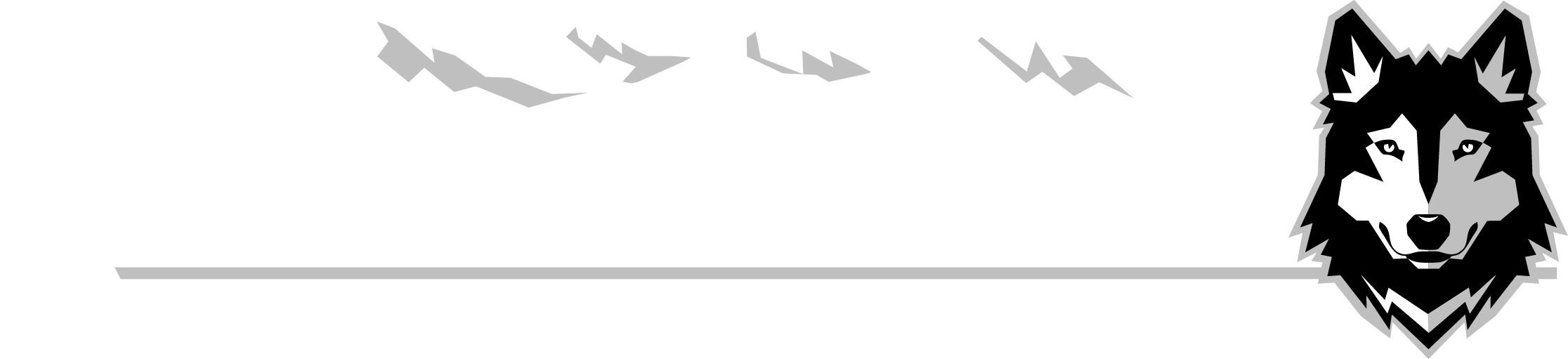 Design a logo for a RV facebook group wolfpack toyhauler owners