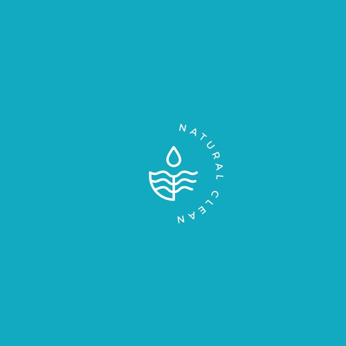 Natural Clean Logo Design