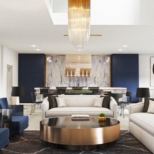 Living & Kitchen luxury interior design