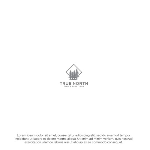 True North Tiling Solutions Logo