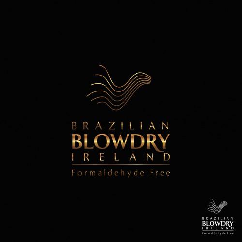 Brazilian Blowdry