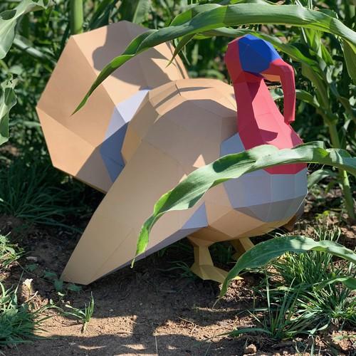 Turkey Paper Model