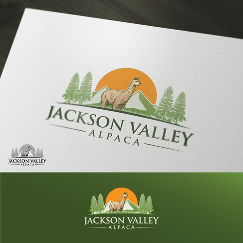 Jackson Valley Alpaca
