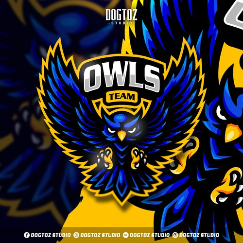 Owls Team