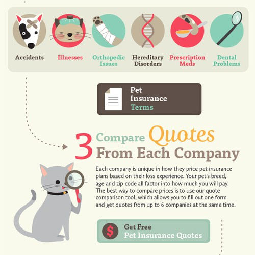 Infographic for Pet Insurance Agency