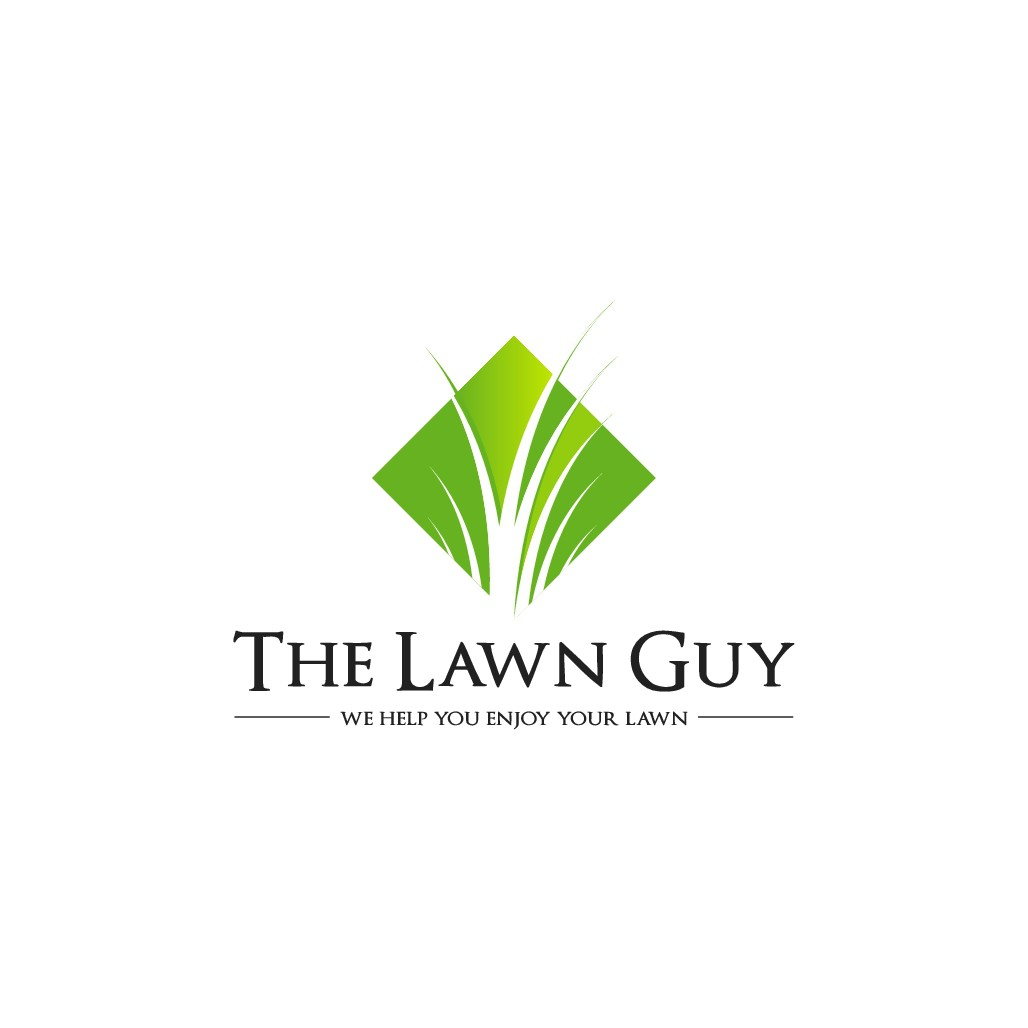 Help The Lawn Guy with a new logo and website