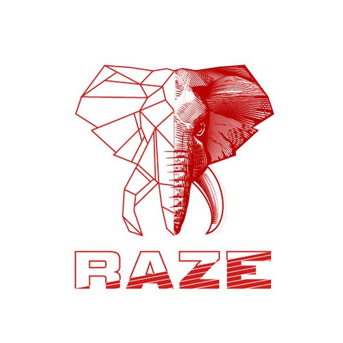 Raze Exchange logo design concept